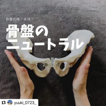 骨盤のニュートラル